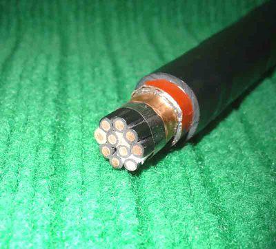 全塑铜带屏蔽钢带铠装控制电缆KVV22P2